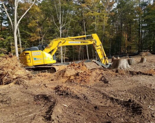 Land Clearing-Jonesboro Tree Trimming and Stump Grinding Services-We Offer Tree Trimming Services, Tree Removal, Tree Pruning, Tree Cutting, Residential and Commercial Tree Trimming Services, Storm Damage, Emergency Tree Removal, Land Clearing, Tree Companies, Tree Care Service, Stump Grinding, and we're the Best Tree Trimming Company Near You Guaranteed!
