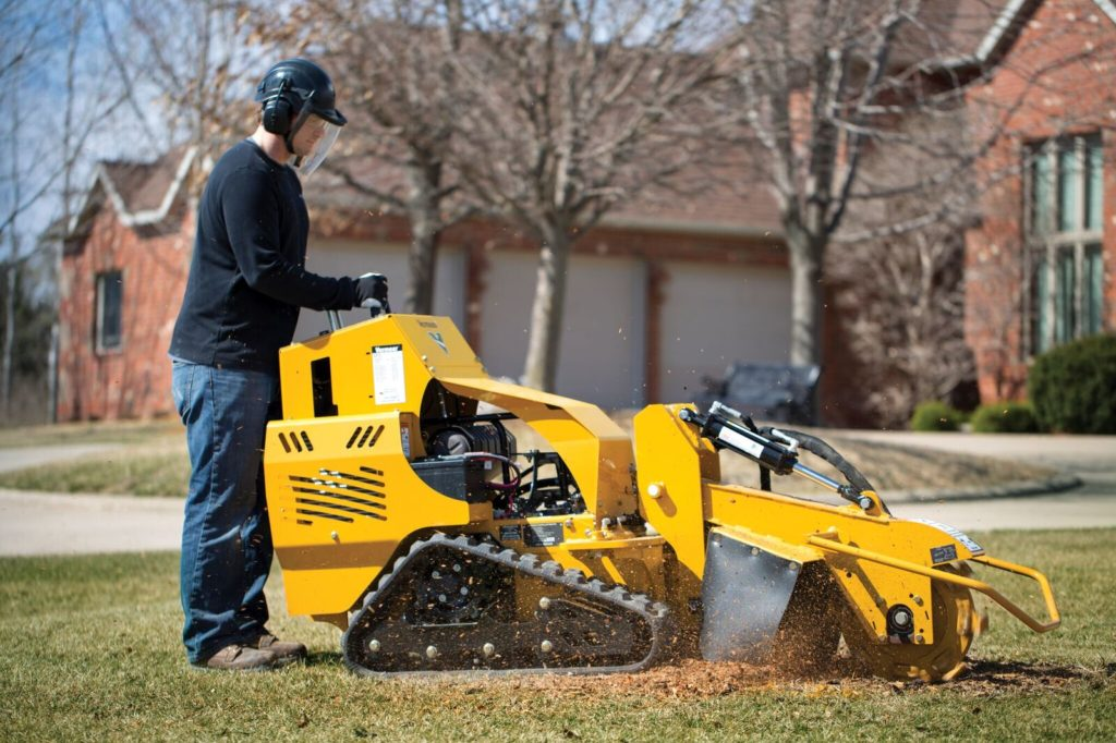 Bono-Jonesboro Tree Trimming and Stump Grinding Services-We Offer Tree Trimming Services, Tree Removal, Tree Pruning, Tree Cutting, Residential and Commercial Tree Trimming Services, Storm Damage, Emergency Tree Removal, Land Clearing, Tree Companies, Tree Care Service, Stump Grinding, and we're the Best Tree Trimming Company Near You Guaranteed!